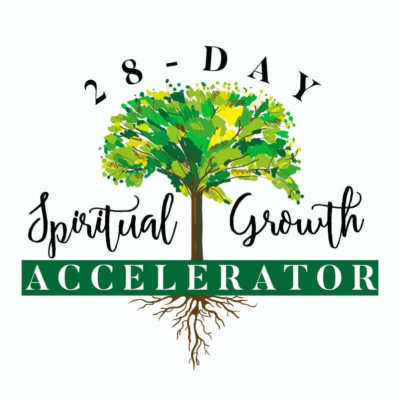 28-day_accelerator